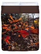 Oak In Evening  Duvet Cover