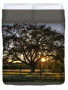 Oak Tree Sunset Duvet Cover