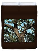 Oak Tree Two Duvet Cover