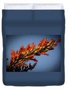 Ocotillo Flower Duvet Cover