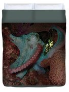 Octopus On Night Dive Duvet Cover