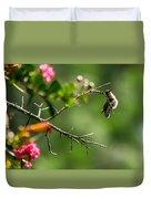 Odd Pose - Hummingbird Duvet Cover