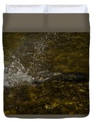Of Fishes And Rainbows - Wild Salmon Run In The Creek Duvet Cover