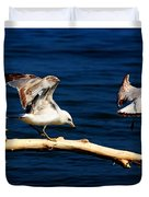 Off You Gull Duvet Cover