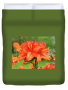 Office Art Prints Azaleas Botanical Landscape 11 Giclee Prints Baslee Troutman Duvet Cover