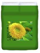 Office Art Sunflower Sun Flowers Giclee Baslee Troutman Duvet Cover