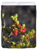 Ohelo Berries Duvet Cover