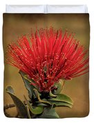 Ohia Lehua Flower Volcanos National Park Duvet Cover
