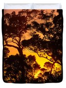 Ohia Trees At Sunset Duvet Cover