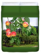 Okanagan Apricots Duvet Cover