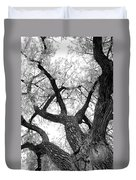 Old Cottonwood Tree Duvet Cover