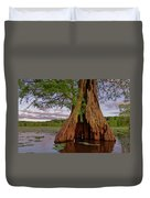 Old Cypress Trunk Duvet Cover