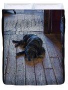 Old Dog Old Floor Duvet Cover