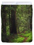 Old Growth Cedars Duvet Cover