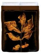 Old Hickory Leaf Duvet Cover