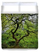 Old Japanese Maple Tree Duvet Cover
