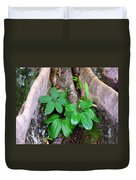Old Life New Life Duvet Cover