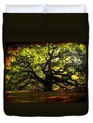 Old Old Angel Oak In Charleston Duvet Cover