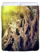 Old Sacred Olive Tree  Duvet Cover