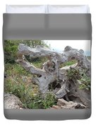Old Stump At Gold Beach Oregon 1 Duvet Cover