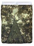 Old Sugar Maple Tree Duvet Cover