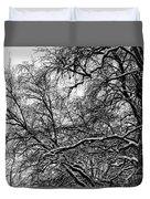 Old Tree 6 Duvet Cover