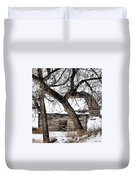 Old Ulm Barn Duvet Cover