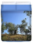 Olive Trees Near Olvera Duvet Cover