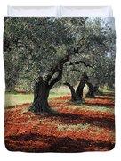 Olive Trees Duvet Cover