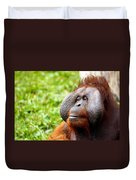 Ollie The Orangutang Duvet Cover