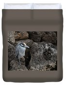 On The Rocks - Yellow-crowned Night Heron Duvet Cover