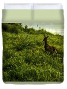 Among The Golden Rod Duvet Cover