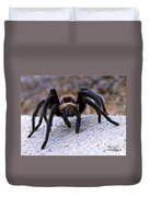 One Big Hairy Spider Duvet Cover