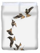 One Bird One Dive. Duvet Cover