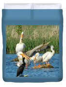 One Sassy Pelican And Friends, West Central Minnesota Duvet Cover