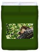 Cooper's Hawks Mating Duvet Cover
