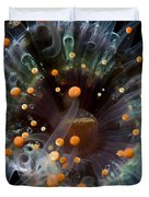 Orange And Black Anemone, Komodo Duvet Cover