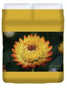 Orange And Yellow Strawflower Duvet Cover