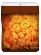 Orange Anemones Duvet Cover