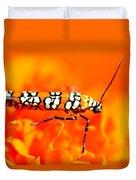 Orange Beetle On Orange Flower Duvet Cover