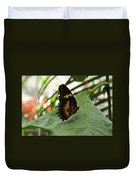 Orange Black Butterfly Duvet Cover