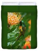 Orange-breasted Sunbird Feeding On Protea Blossom Duvet Cover