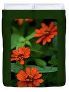 Orange Daisey's Duvet Cover