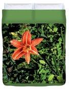 Orange Day Lily 1 Duvet Cover