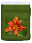 Orange Day Lily No.2 Duvet Cover