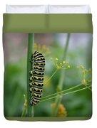 Orange Dot Caterpillar Duvet Cover