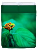Orange Flower Iv Duvet Cover