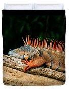 Orange Iguana Close Up Duvet Cover