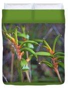 Orange Kangaroo Paw Duvet Cover