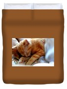 Orange Kitten Sleeping In Silk And Satin Duvet Cover